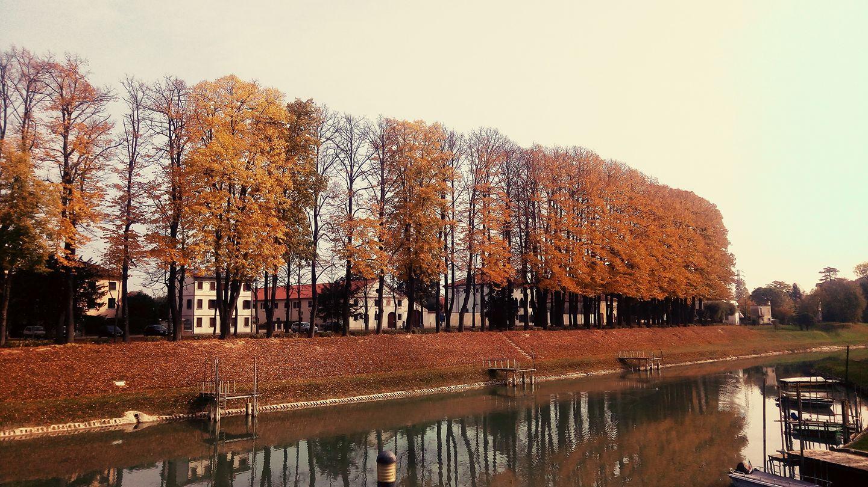 Riviera Scarpa_autunno